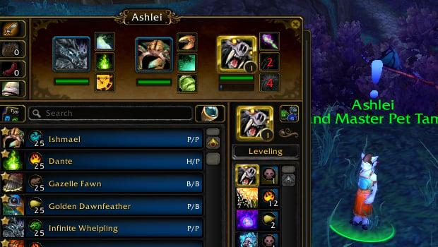 ashlei pet battle addon rematch ab