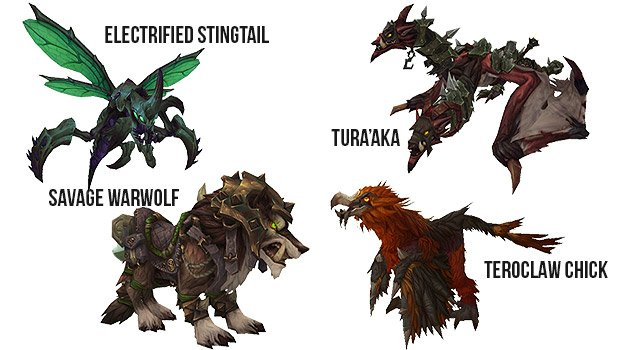 locked and loaded - draenor pets