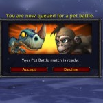 Pet Battle PVP tips and why you should give it a try