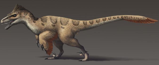 Utahraptor-NoHeaderNotRightSize-102315
