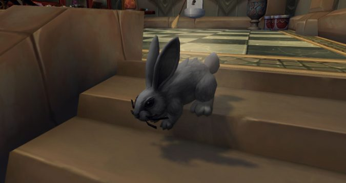 Dust Bunny in Legion's Dalaran