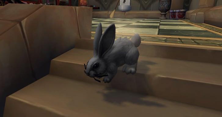 Dust Bunny in Legion's Dalaran