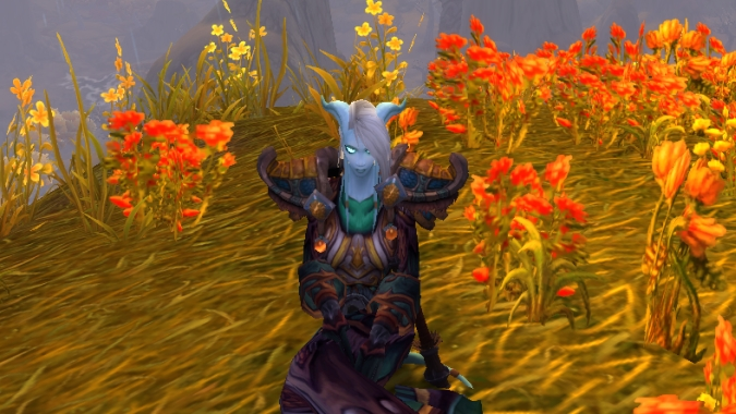 How many Draenei pictures do I have? As many as I need.