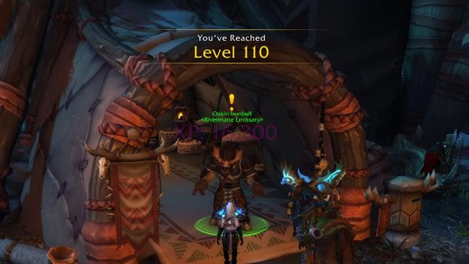 level_110_header